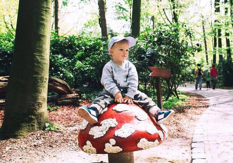 פארק אפטלינג בהולנד